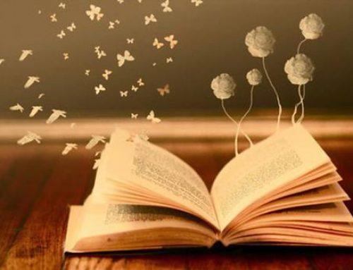 Encourage Reading for Fun